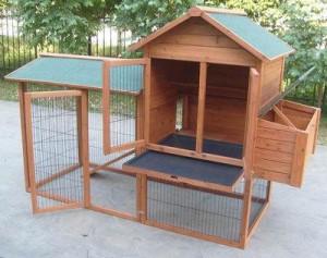 Poulailler pour élevage de poules naines
